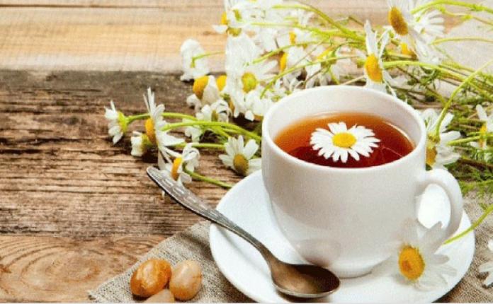 papatya çayı sağlığa faydaları